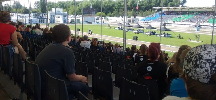 Inklusionstage der Islandpferde- WM